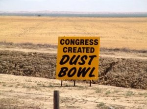 Congress Created Dust Bowl. Picture courtesy of TheBlogProf